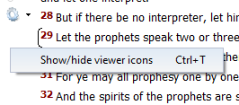 BibleView Window Options Icons